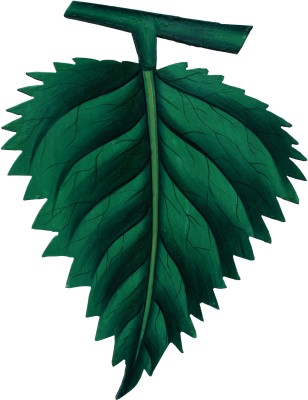 Parvidvap Handicrafts Leaf Showpiece  -  20.32 cm(Wooden, Green)