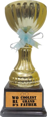 Tiedribbons Gift For World Coolest Grand Father Trophy Showpiece  -  22 cm(Gold Plated, Gold)