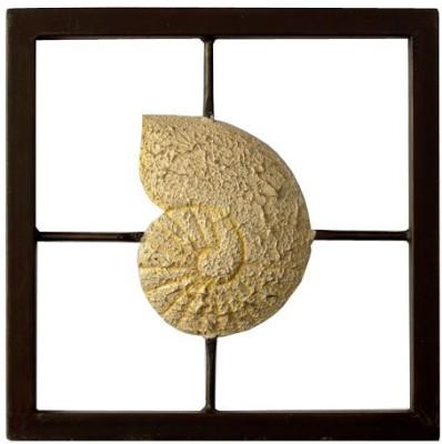 Nafees Iron Snail Frame Wall Decor Showpiece  -  36 cm