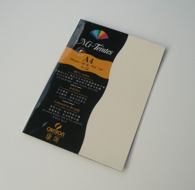 Canson Mi-Teintes A4 Colour Sheets 160gsm - Pale Yellow 101 Sketch Pad(Pale Yellow, 5 Sheets)