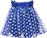 Le Luxe Embroidered Girls Gathered Blue ...