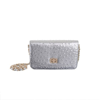 Peaubella Women, Girls Silver PU Sling Bag