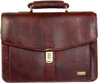 Scharf Men & Women Brown Genuine Leather Messenger Bag