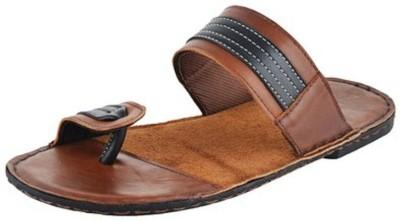The Elegant Slippers