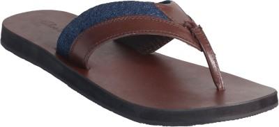 Shoeblizz Lifestyle Slippers