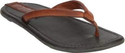 ESTD. 1977 4335 - Brown Slippers