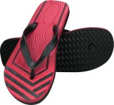 Zaan Flip Flops