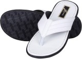 Knight Ace Slippers