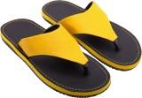 Royal Collection Flip Flops