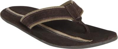 ESTD. 1977 2924 - brown Flip Flops