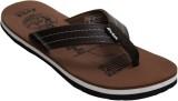Evok Collection Flip Flops