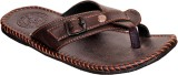 Domestiq Men Brown Sandals