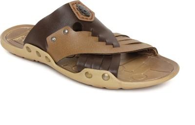 Golite Slippers