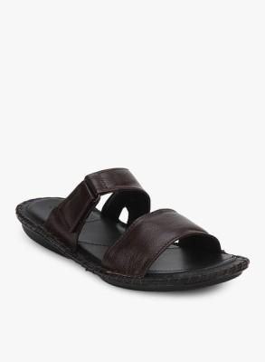 San frissco Slippers