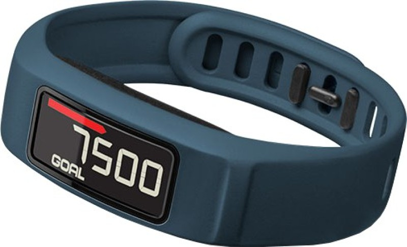 Garmin Vivofit 2 (Large and Small)(Blue)