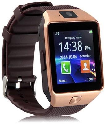 H&K DZ09 Smart Watch Strap(Brown)
