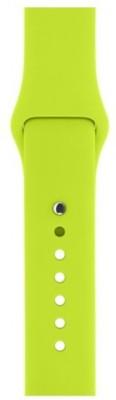 Apple MJ4L2ZM/A Smart Watch Strap(Green)