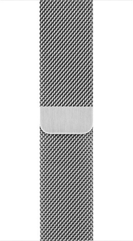 Apple MJ5E2ZM/A Smart Watch Strap(Silver)