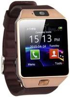 Rock Dz09 Smartwatch(Brown Str
