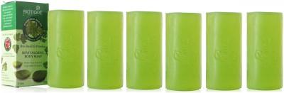 Biotique Basil & Parsley Soap (Set of 6)