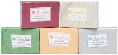 Fuschia Herbal Set-2