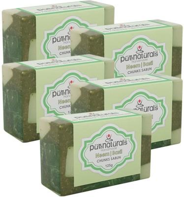 Purenaturals Chunks Soap Neem | Basil - 125g (Set of 5)