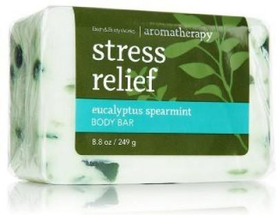 Bath & Body Works Stress Relief Eucalyptus Spearmint Body Bar Soap