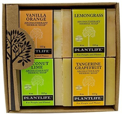 Plantlife Aromatherapy Herbal Soap Top 4 Pack Soap Combo Fruit Gift Set (Vanilla Orange Lemongrass Coconut Lime and Ginger Berry)