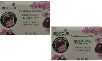 Biotique Bio Himalayan Plum Refreshing Body Soap(Pack of 2 )