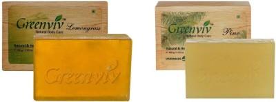 Greenviv Bugs Away Bath Soap Combo