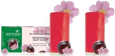 Biotique Himalayan Plum Soap (Set of 2)