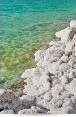 Adovia Dead Sea Salt Soap - All Natural Face and Body Soap Bar