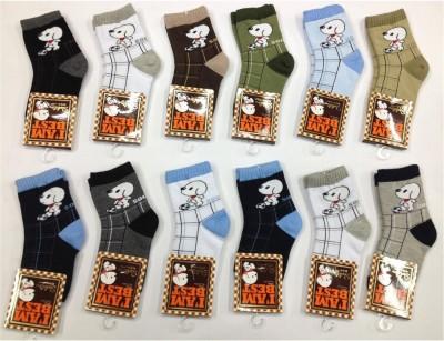 Camey Boy's Ankle Length Socks