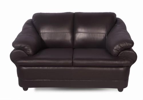 Buy Godrej Interio Jineiro Leatherette 2 Seater Sofa Finish Color