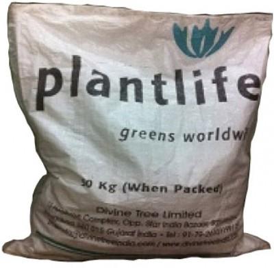 Divine Tree Plant Life Soil Manure
