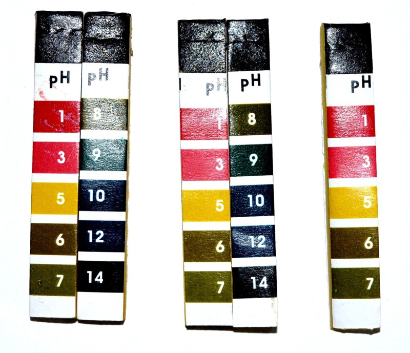 Pin to Pen Litmus Test Kit pH 1 - 14 Indian Soil Test Kit(Set of 100)