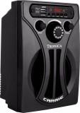Tronica CARRIE Digital FM & MP3 Speaker ...