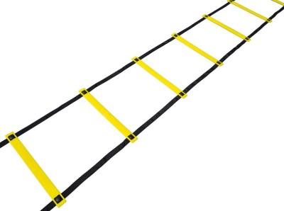 Sahni Sports Agility 4 Mtr Flat Fixed Speed Ladder