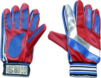 HRS Club Goalkeeping Gloves (Youth, Multicolor)