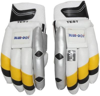 Blue dot Test -I Batting Gloves (Youth, Multicolor)