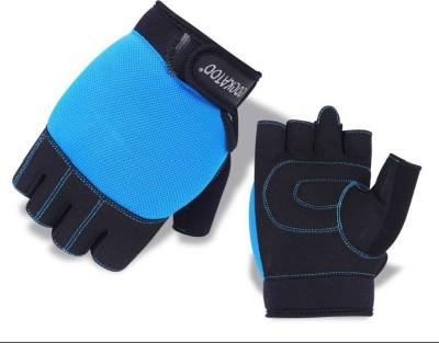 Cockatoo WLG8-Blue Gym & Fitness Gloves (L, Multicolor)