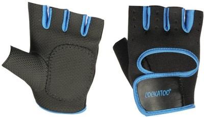 Cockatoo Training Gym & Fitness Gloves (L, Black, Blue)