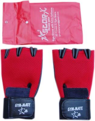 Golden Star Gym Mate Gym & Fitness Gloves (L, Multicolor)