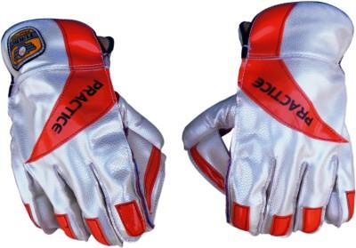 Turbo PRACTICE (Half Samber) Wicket Keeping Gloves (Men, Multicolor)