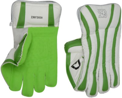 GAS HIGHGLANCE Wicket Keeping Gloves (Youth, Multicolor)