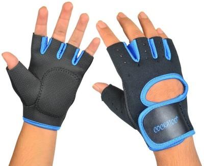Cockatoo Pro Training Gym & Fitness Gloves (L, Black, Blue)