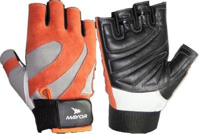 Mayor Victoria Gym & Fitness Gloves (L, Orange, Grey)