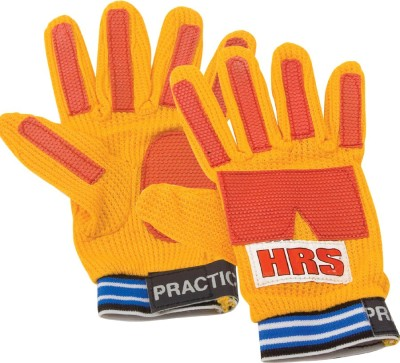 HRS Practice Goalkeeping Gloves (Youth, Multicolor)
