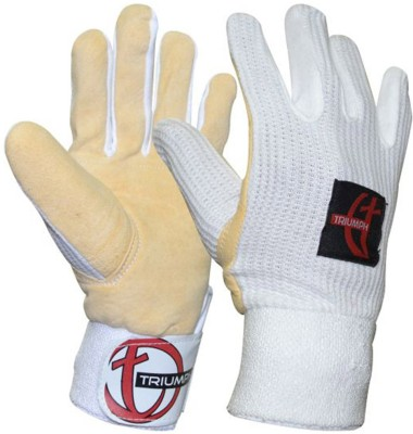 Triumph Wicket Keeper Batting Gloves (Free Size, White)