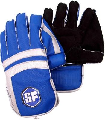 Stanford College Wicket Keeping Gloves (Men, White, Black)